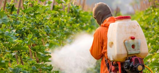 Pestisidler ve Parkinson Hastaları Arasındaki İlişki